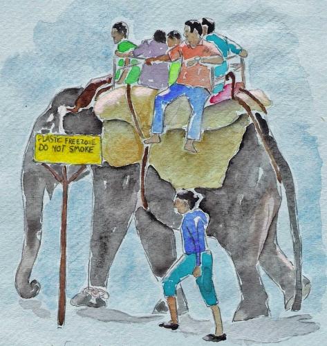 aqua-elephant-promene-touri.jpg