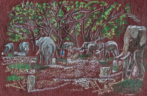 pastel-camp--elephants-guru.jpg